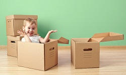 Moving and Packing Services in SW19